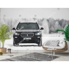 Фотообои Роскошный BMW