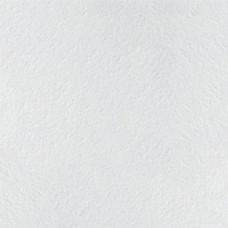 Плита ARMSTRONG Retail Microlook 600 мм 600 мм 14 мм
